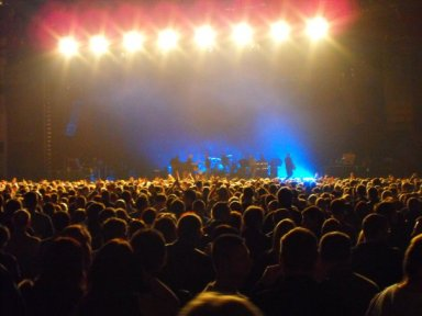 Crowd at Paul Weller