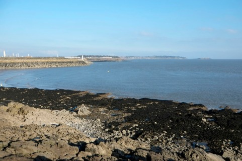 barry-island-winter-amydavies025