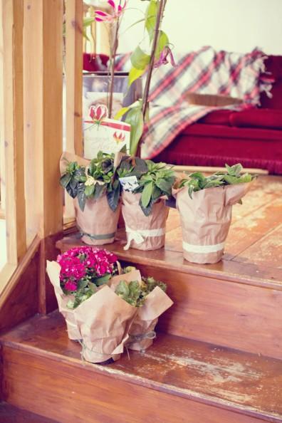 cardiff-forbesfield-flowers-070