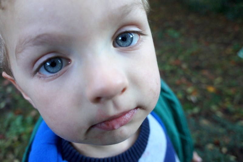 rory_toddler_portrait_011